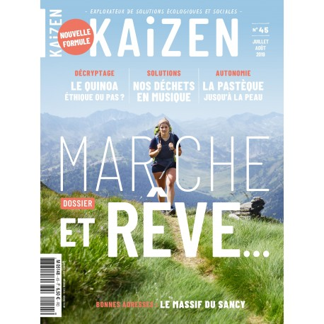 Kaizen 45 : La marche.