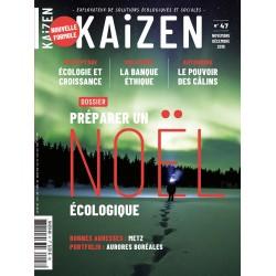 Kaizen 47 : Préparer un Noël écologique