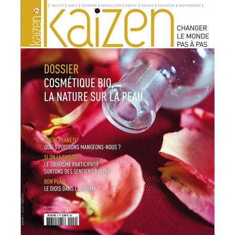 Kaizen n°9