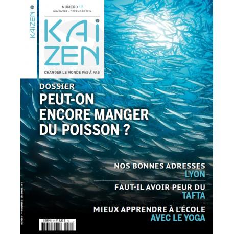 Kaizen 17